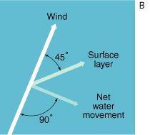 wind at a 90 degree angle to net water movement and a 45 degree angle to the surface layer, description follows