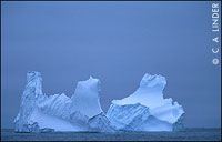 iceberg, description follows
