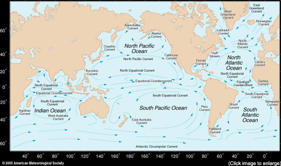 the Earth's oceans with major gyres labeled. Follow gyres link for more information